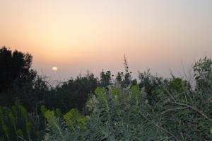 Solnedgang fra Platsavejen