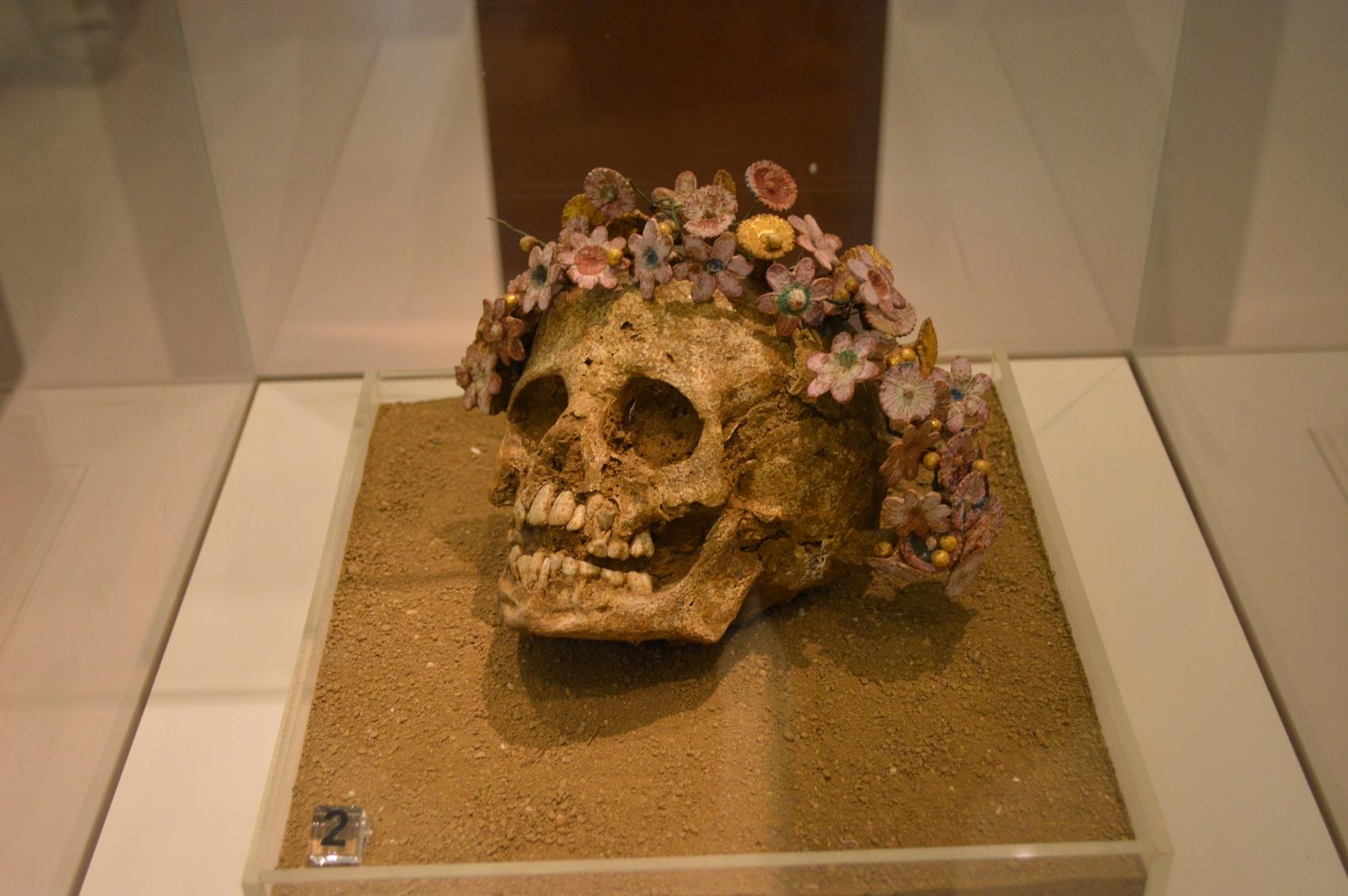 kranie-400-300-fvt-hellinistisk